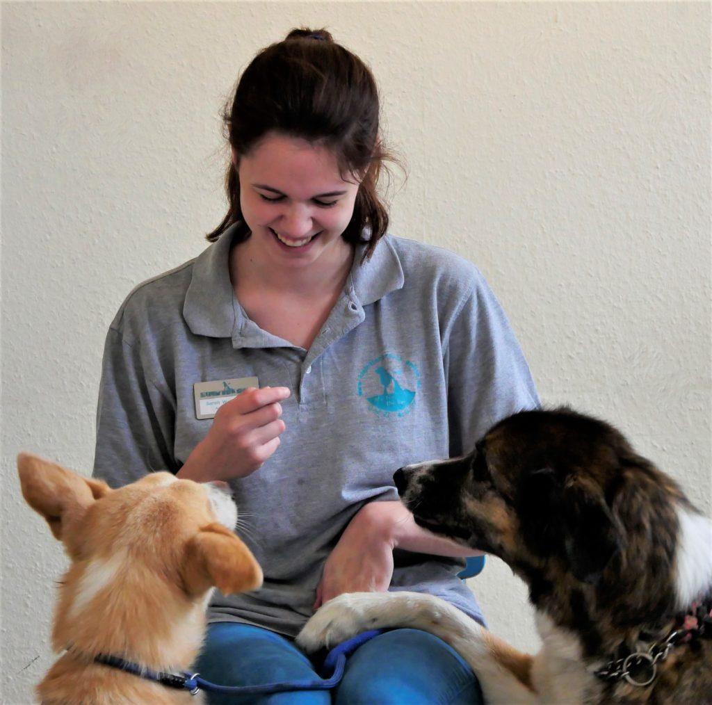 Sarah Wellhausen hält lachend ein Hundeleckerchen in der Hand und beide Hunde betteln darum.